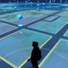 「Pokemon GO」でバグだらけ