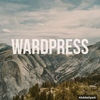 ワードプレスでブログを作るときのサーバーとドメインについて