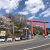 3回目の『筑波山』は花を愛でる山遊び
