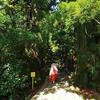 2019GW和歌山旅行Day5:壺衣装で熊野古道を歩く
