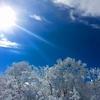 今日は雪はあまり降らず!しかし、路面凍結や道路がでっこぼっこ…そして子どもが…