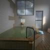 【菊池市】亀の甲温泉~とても素朴な美人の湯!ライオンの湯口が印象的な居心地の良い空間