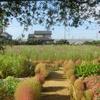 神原町花の会(花美原会)( 203)    花いっぱい活動記録と花コンク-ル応募写真