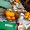 柚子胡椒仕込会。