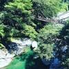 【徳島の旅】400年の歴史を持つ阿波踊りへ出掛けよう♬