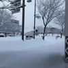 秋田の食べ物紹介 ~名代三角そばや~