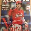 広島カープ優勝!ファン歴5年のぼくがCSと日本シリーズの展望を予想してみた
