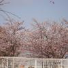 季節は春へ