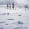 素晴らしき美瑛の冬