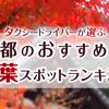 京都の紅葉名所ランキング2020!タクシードライバーおすすめベスト15