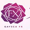 『ゲイスキャFX』人気の理由とは?