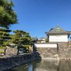 一般参賀には早いけど元日に皇居外苑へ。「門」巡りをして来ました。