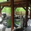 新潟 長岡の奥座敷・蓬平温泉から山古志じょんのびの旅