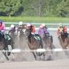 【シリウスS 2019 予想】過去のレース傾向分析&各馬評価まとめ /  実は府中2100mよりも阪神2000m・・・だったりする?