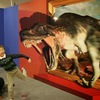 トリック3Dアート展に行ってきた