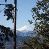 勝俣部長の「高尾登山と健康体質作り」478・・・・変な 安心感