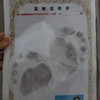 珠洲市で「足紋」を取った