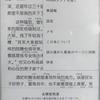 Kindle Paperwhiteで中国語書籍にピンインを併記する機能をさっそく使ってみた