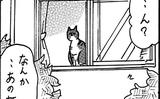 【ネコに勝てない】飼ってない猫 その44「飼われている(?)猫」【エッセイまんが】