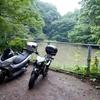 吉沢の池(神奈川県平塚)