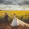 格安で結婚式を挙げるなら、都民共済や県民共済はいかが?