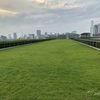 穴場のデートスポットなら豊洲の屋上緑化広場【東京都の公園:江東区】