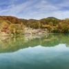 西川高弘の秋