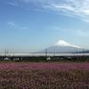 新しい新幹線予約システム「スマートEX」は「エクスプレス予約」と何が違う?