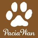 パシャワン撮影日記-PaciaWan-
