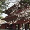 桜を観る(2021年)