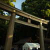 Gopro散歩〜明治神宮
