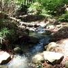 大雨の後にだけ見られるあいかわ公園のおすすめ自然スポットを紹介!