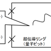 量子コンピュータの基本素子・量子ビットのハードウェア実装(超伝導磁束編その3~初期化~)