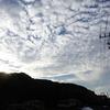 里山で野鳥観察@RX10