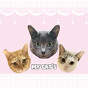 保護猫に好かれたい猫好きの日記