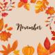 【2020年11月運営報告】雑記ブログ開始から丸2年【アクセスと収益】