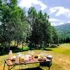 【北海道グルメ】星野リゾート トマム 大草原でピクニックランチ♪