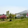 トミカ博に行ってきました【安比高原スキー場】