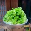 抹茶のかき氷の中のトップランカー|御菓子司 賣茶翁(ばいさおう)