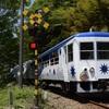 第594列車 「 山陰DC応援企画!スイッチバックに挑む奥出雲おろち号を狙う 2018春 島根・鳥取遠征その6 」