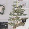 珍しいクリスマスツリー、Alpine Noble アルパイン・ノーブル