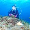 ♪到着日からの半日慶良間チービシ体験ダイビング♪〜沖縄体験ダイビング〜