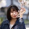 COCOROちゃん その34 ─ 桜よ咲いてよ咲いて咲いてお散歩撮影会2021 ─