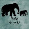 ナッジってなんだ?ナッジ理論を簡単に解説します。ナッジってどのように使われているのでしょうか。