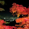 大山寺のライトアップされた紅葉と参道。夜景も絶景です!