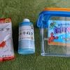 金魚を子供がお祭りでGETして帰宅!取り急ぎ飼育グッズを全て100均で揃えました。