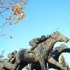 【札幌競馬場】 秋ですね~