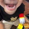 おとなの歯への生えかわり