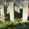 光照寺門前の石碑群