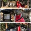 京都 北野天満宮骨董市散歩